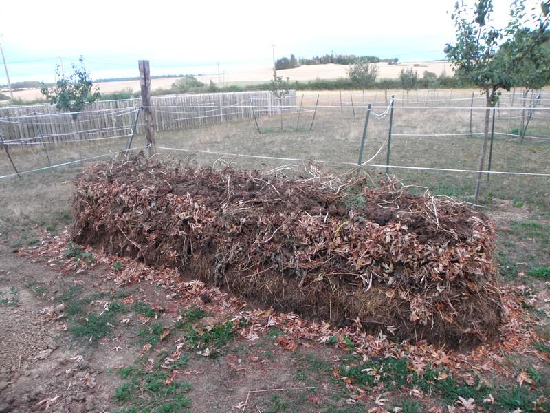 compost-2019