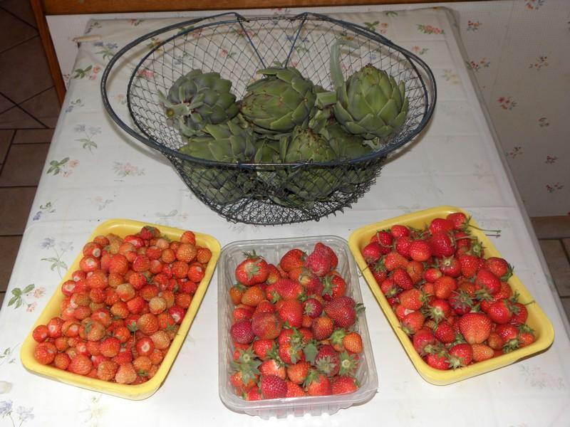 fraises-artichauts
